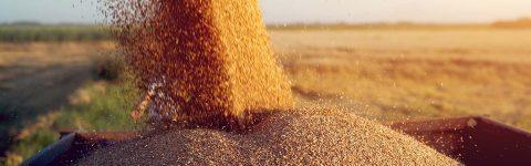 Dedicat agriculturii din România.